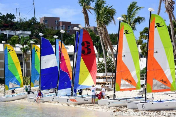 The new Hobie Wave fleet at St Thomas International Regatta – photo Dean Barnes/STIR
