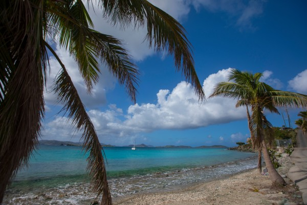The stunning island of St John post hurricane – photo USVI Department of Tourism